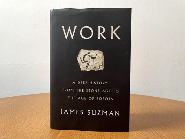 Book Briefing: 'Work: A Deep History' by James Suzman